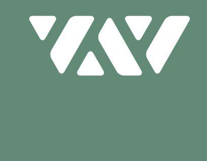 Avalanche blockchain avax crypto coin